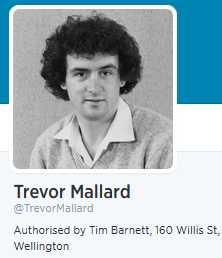 Mallard Twitter
