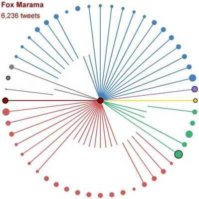 TwitterFoxMarama
