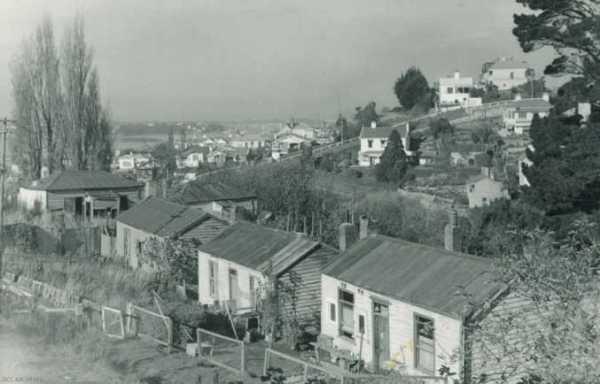 HousingDunedin1959
